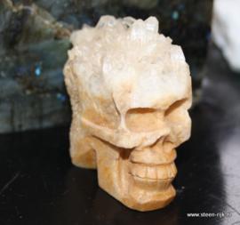 skull  yellow face - granny vrije geode