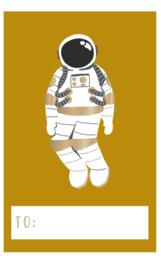 Naam stickers astronaut