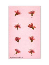 Ronde bloemen stickers roze