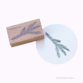 Stempel hout | KERST | Dennenboom tak