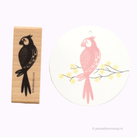 Stempel hout papegaai vogel