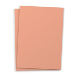 DIY blanco kaart Perzik A6