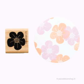 Stempel waterlelie bloem