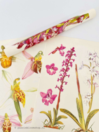 Vintage papier kleurrijke Hyacint bloemen