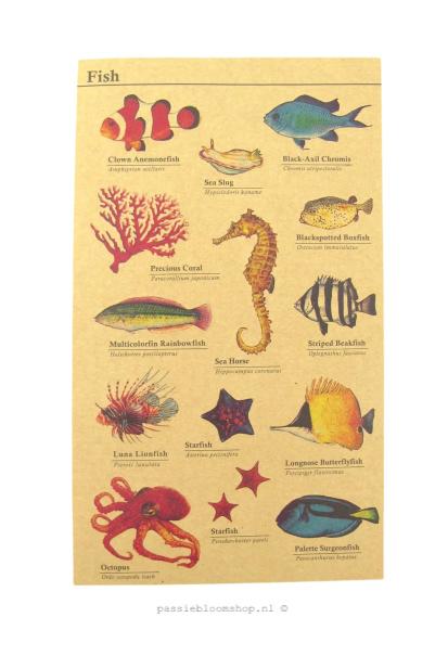 Stickers kraft vissen/ zee