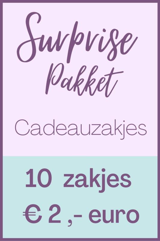 Surprise pack met 10 cadeauzakjes