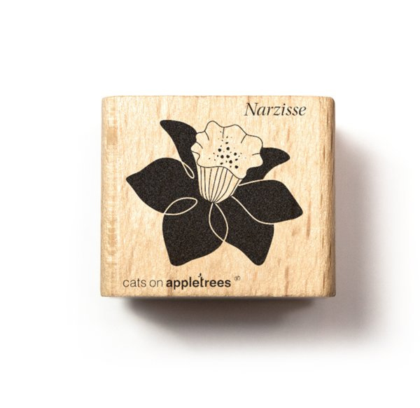 Plant stempel narcis bloem