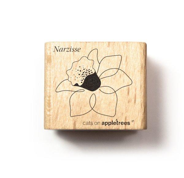 Plant stempel voorjaarsbloem narcis