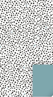 Cadeauzakjes zwart en blauw stipjes 12x19
