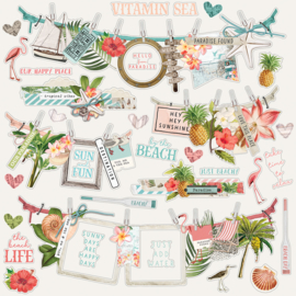 SV Coastal Banners Stickers Sheet - Unit of 3