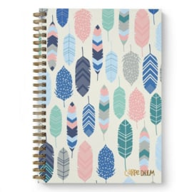 B5 Hardcover Notebook Feathers - Unit of 1