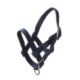 HB Ruitersport - Mini Veulen halster