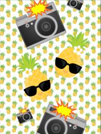 Paparazzi Pinapple