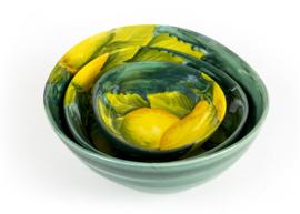 Groen schaaltje met citroenen klein