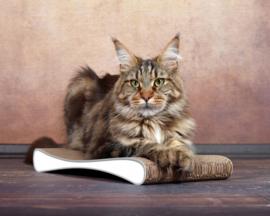 Cat-On Grattoir Junior