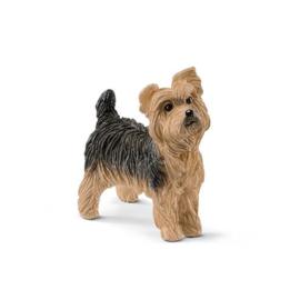 Yorkshire Terrier (schleich)