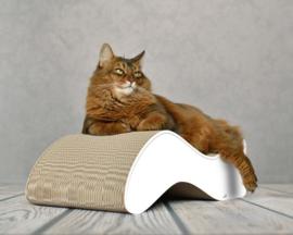 XL Cat-on