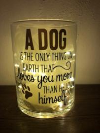 Vaas tekst A Dog