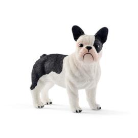 Franse Bulldog (schleich)