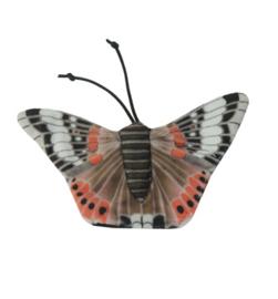 Admiraal vlinder kattenkruid