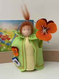 Bloemenkindje Viool / Flowerchild Pansyflower