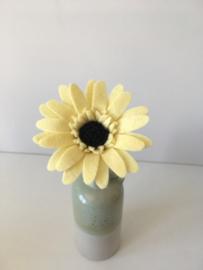 Gerbera zachtgeel/ Gerbera soft yellow