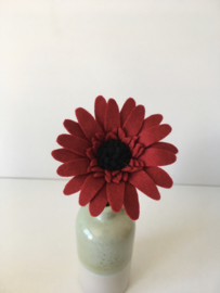 Gerbera bordeauxrood/ Gerbera dark red