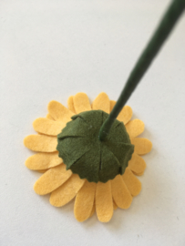 Gerbera  kuikengeel/ Gerbera chick yellow