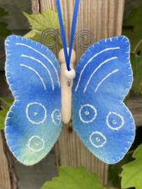 Vlinder Blauw / butterfly blue