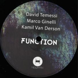 "David Temessi & ... - Function (12"")"