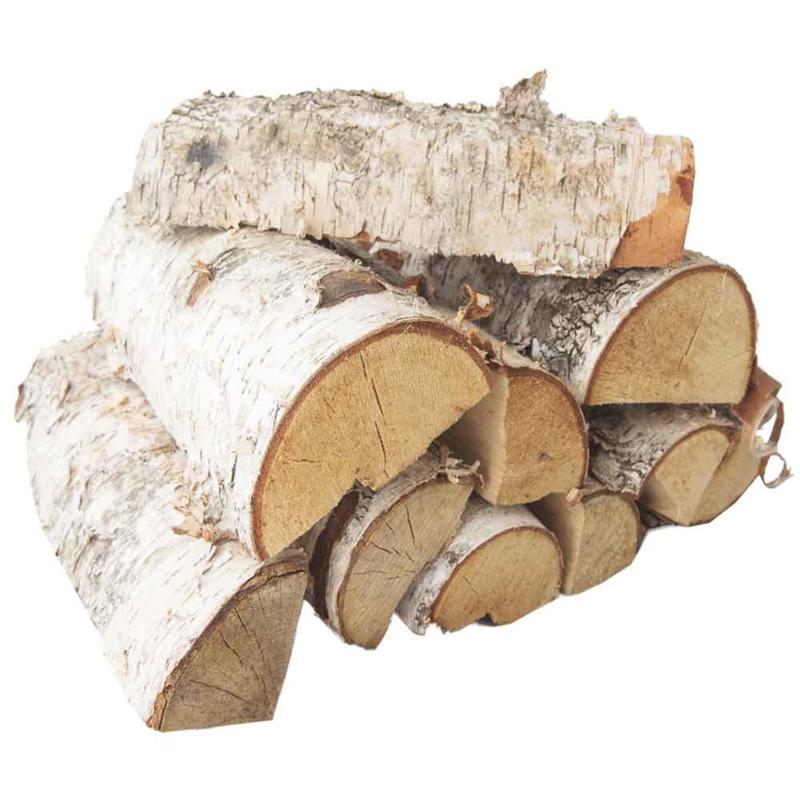 Berken hout, vers