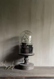 Glazen stolp op oud houten voet L