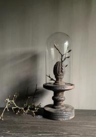 Glazen stolp op oud houten voet S