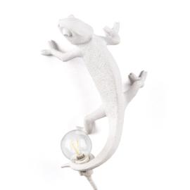 Kameleon lamp (going up)
