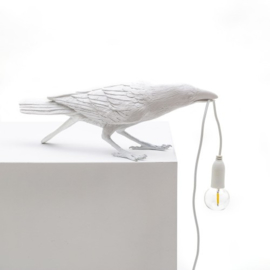 Bird lamp - Playing