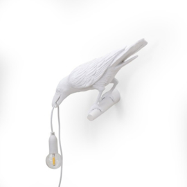 Bird lamp - Looking