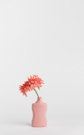 Bottle vase - blush #21