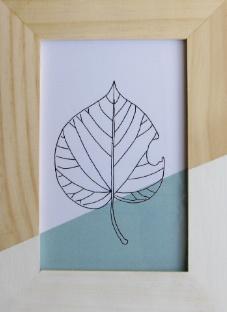 Barabrenda   Lijstje blad mintgroen