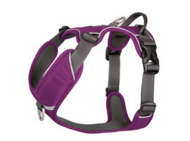 Dog Copenhagen Harnas Purple Passion