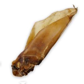 Carnis   Buffeloor met schelp