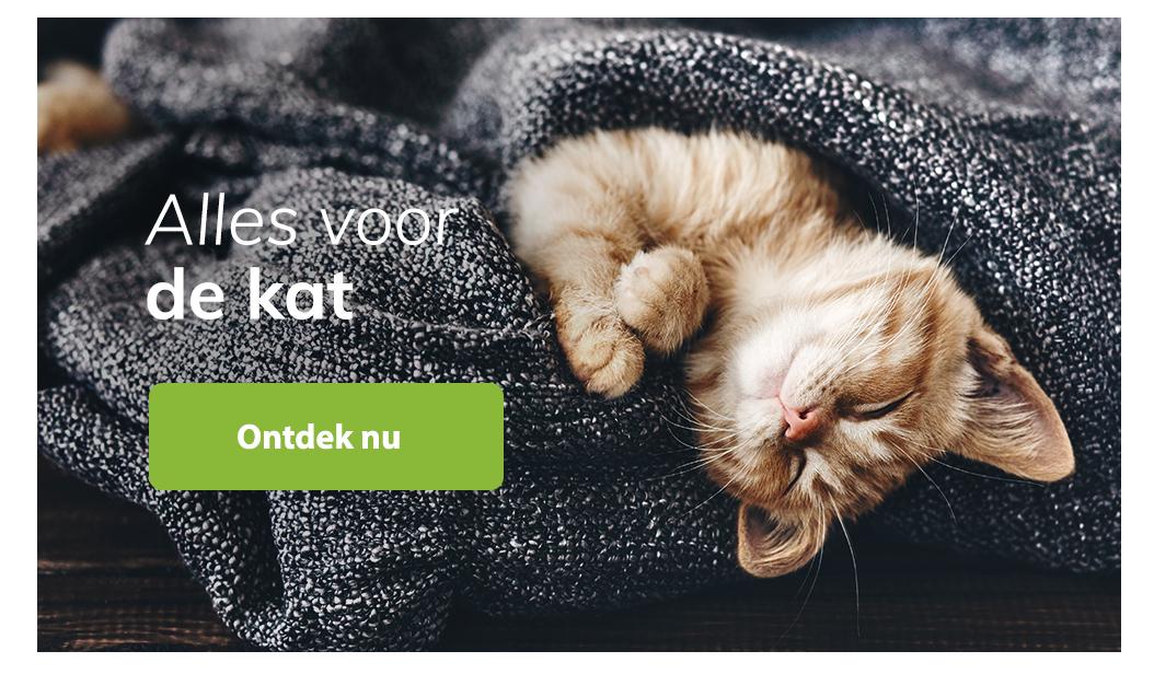 Blijepootjes dierenspeciaalzaak kat