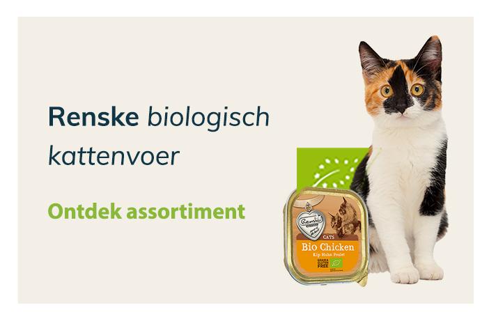 Blijepootjes dierenspeciaalzaak renske biologisch voeding kat
