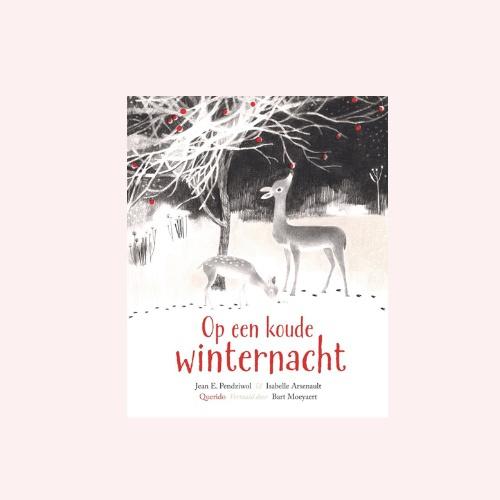 Op een koude winternacht - prentenboek