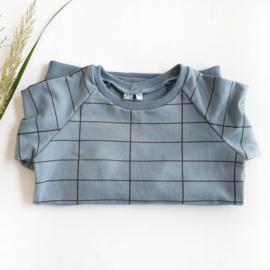 Raglan shirt, Dyna grid blue, maat 110