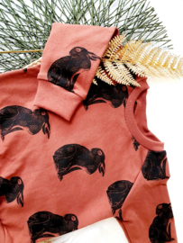 Sweaterdress raglan, maat 80, konijnen