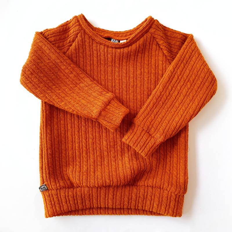 Raglan shirt/sweater