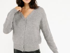 EVA cardigan grey