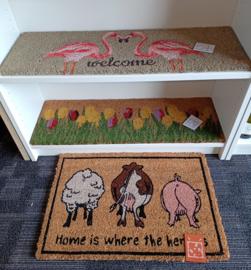 Kokosmat 'home is where the herd is'