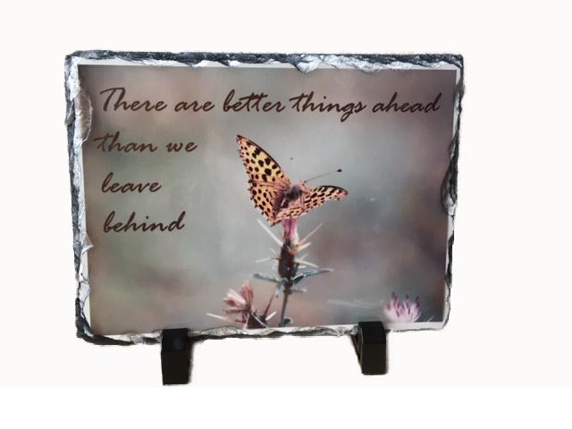 Leisteen 'vlinder'