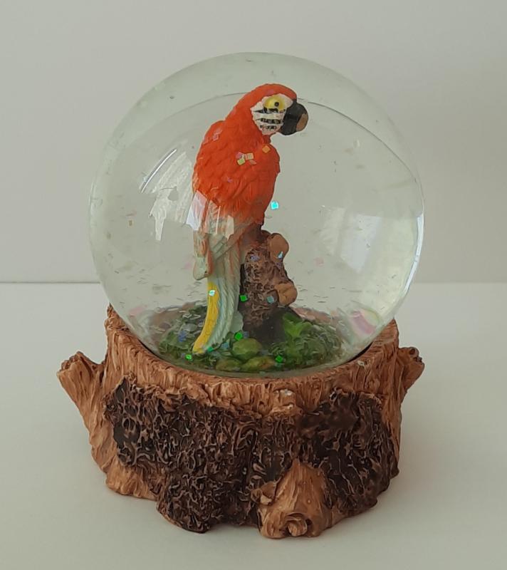 Schudbol papegaai